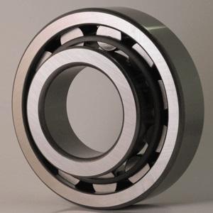 Cylindrical Roller Bearings NJ