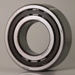 Cylindrical Roller Bearings NUP